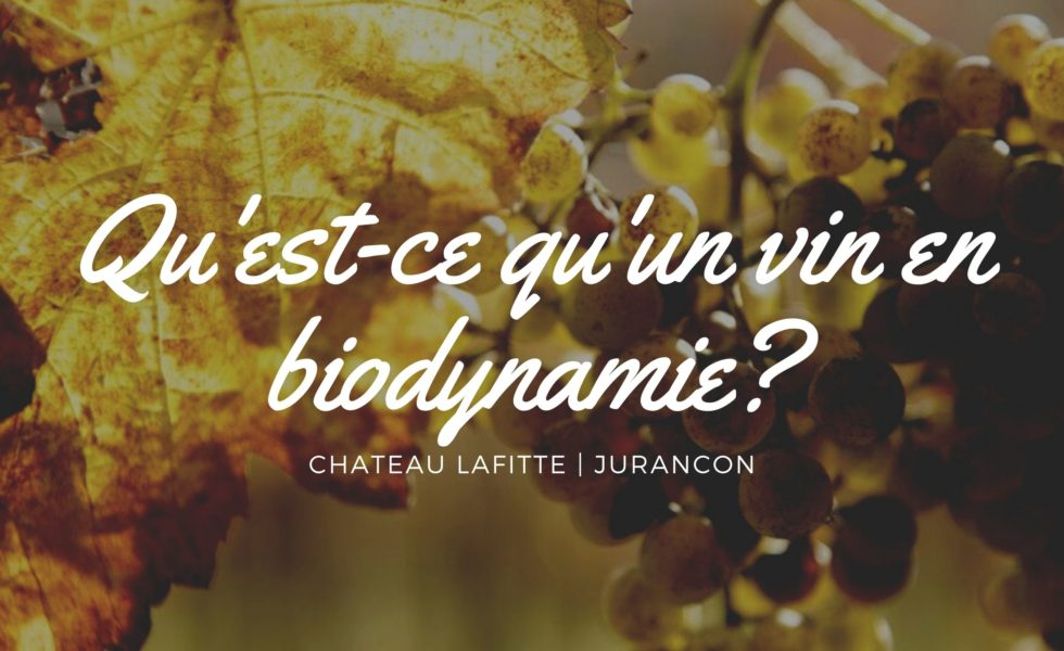vin biodynamie chateau lafitte monein
